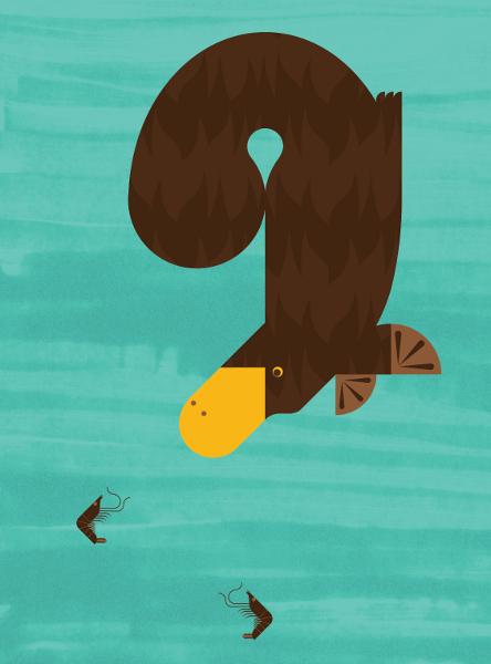 platypus-by-illustrator-alan-dalby-of-column-arts-agency