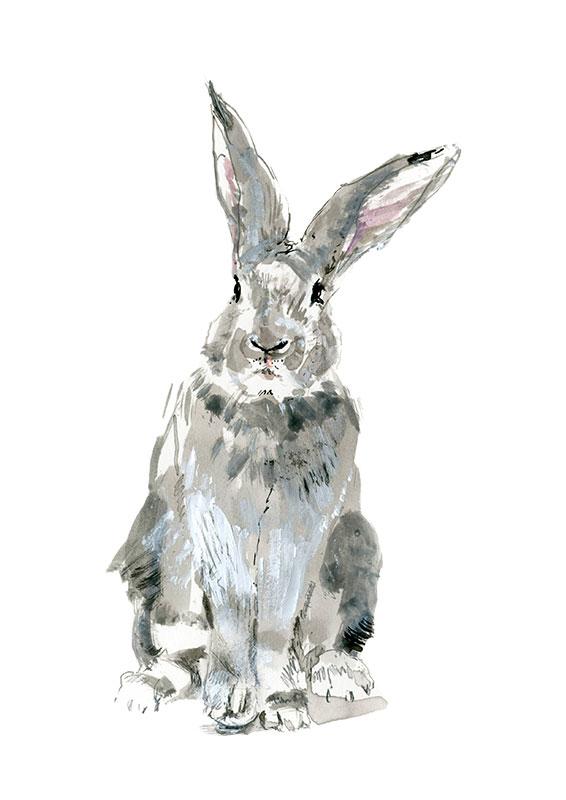 SM_WS_Rabbit